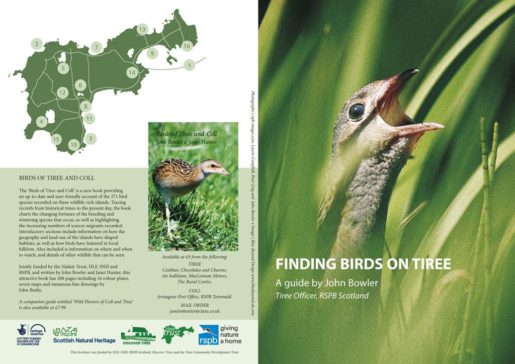 finding birds brochure cover