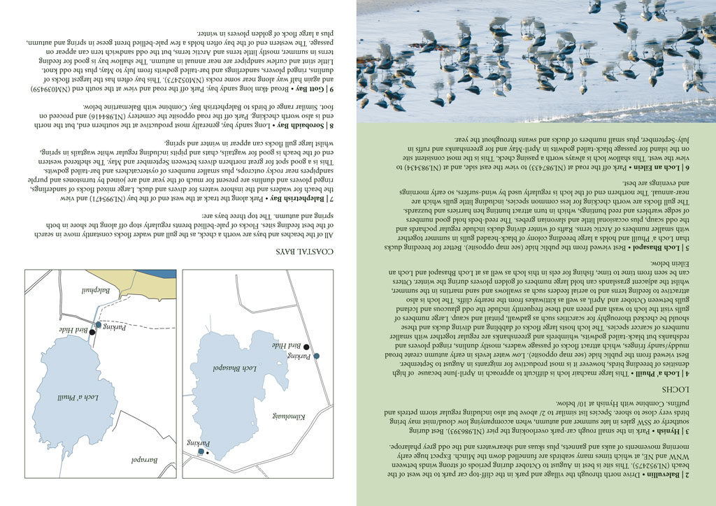 finding birds brochure page