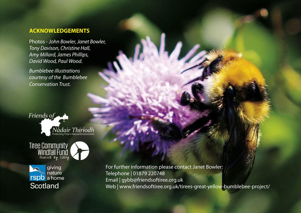 gybb brochure backcover