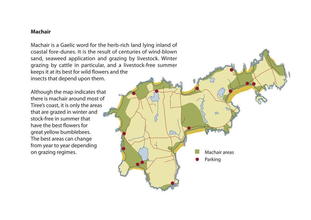 gybb brochure map