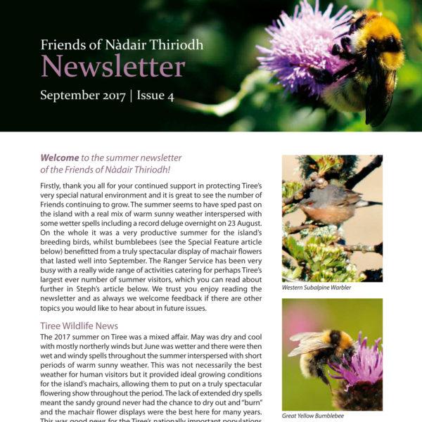 An Iodhlann newsletter