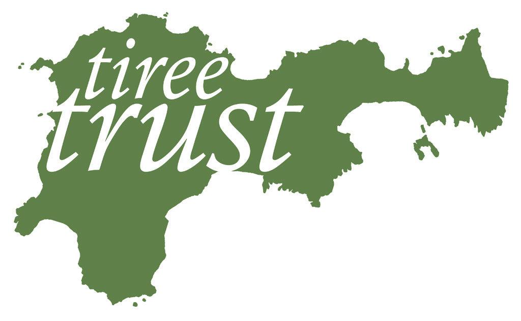 final trust logo design